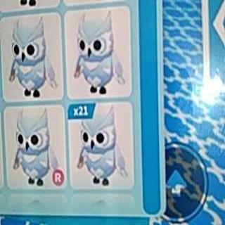 Bundle   21x Snow Owl Cheapest