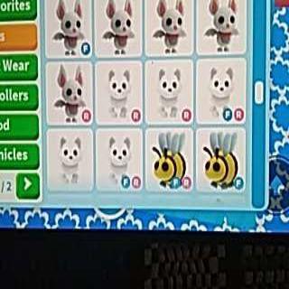 Bundle   12x Pet Cheapest