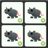 Bundle   4 Neon-Rat