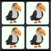 Bundle   4 Toucan