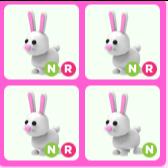 Bundle   4 Neon Bunnies