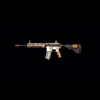 PUBG | Chengzi's M416 CODE INSTANT DELIVERY