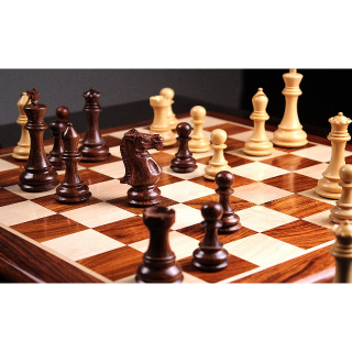 I will Teach You How To Play Chess Like A Champ!