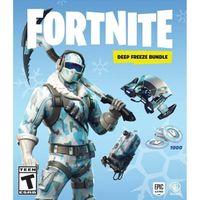 Fortnite - Deep Freeze Bundle - PS4 - United States