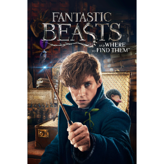 Fantastic Beasts and Where to Find Them 4K MoviesAnywhere