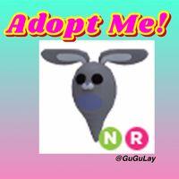 Pet | Neon R Ghost Bunny!