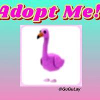 Pet | Flamingo x 1