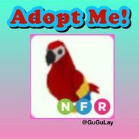 Pet | Neon FR Parrot x 1