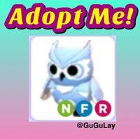 Pet | Neon FR Snow Owl x 1