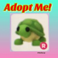 Pet | R Turtle x 1