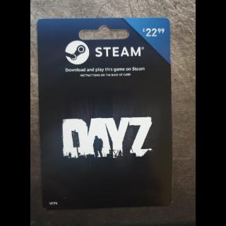 DAYZ Steam Digital Download