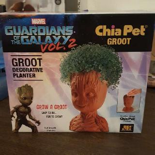 Baby Groot Chia Pet