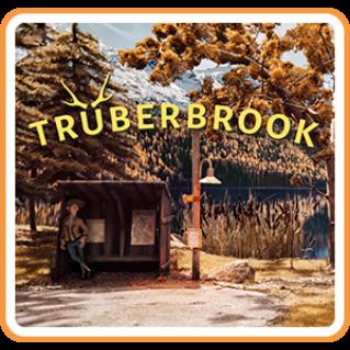 𝐈𝐍𝐒𝐓𝐀𝐍𝐓 - Trüberbrook - NA - SWITCH