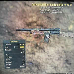 Weapon | AAE25VATS radium
