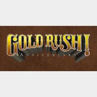 Gold Rush! Anniversary [Steam] [PC] [Instant Delivery] [Global Key]