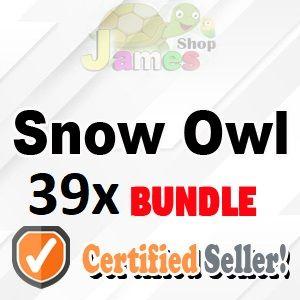 Bundle   39x Snow Owl
