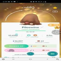 Bundle | Piloswine 485 Cp Lucky🍀