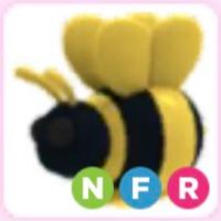Pet | NFR King Bee Neon