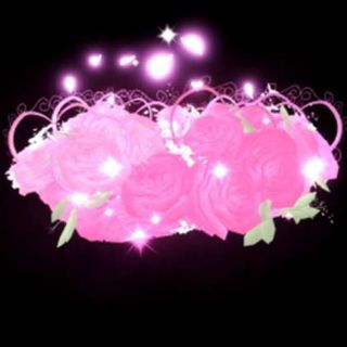Accessories | Valentine's 2020 Halo