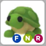 Pet | Neon Turtle NFR