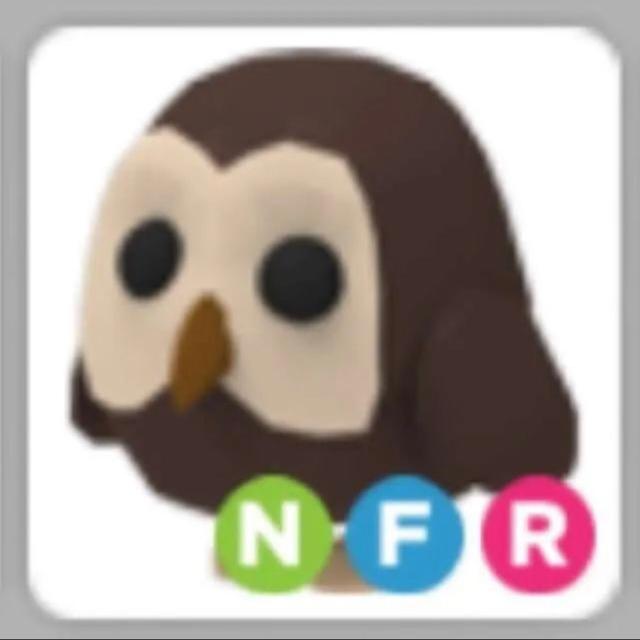 Pet | NFR Owl