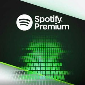 Spotify premium 4 months
