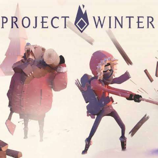 PROJECT WINTER STEAAM