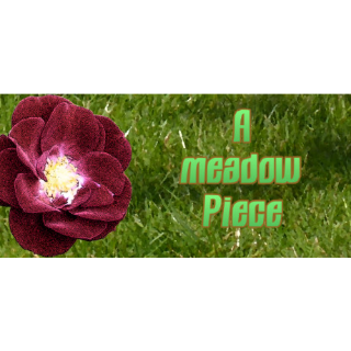 A meadow Piece / Steam Key