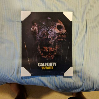 Call Of Duty WW2 Zombies Picture - Free Shipping!