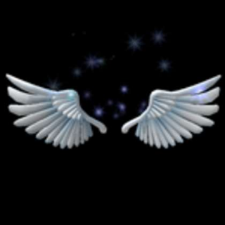 Accessories | Angelic Wings Roblox