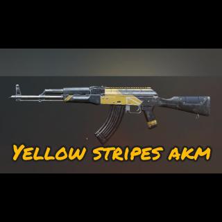 PUBG | LITE Yellow Stripes AKM