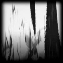 Spatiotemporal | Burnt Sienna