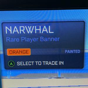 Bundle | Orange Narwhal Banner