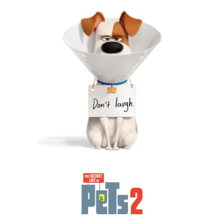 The Secret Life of Pets 2 HD Digital Movie Code!