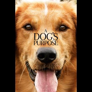 A Dog's Purpose HD Digital Movie Code!
