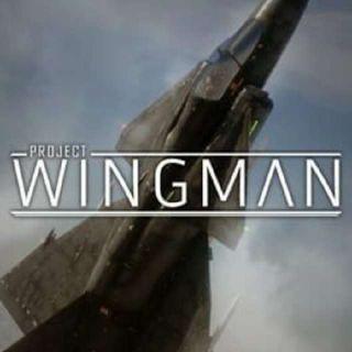 Project Wingman Steam Key GLOBAL