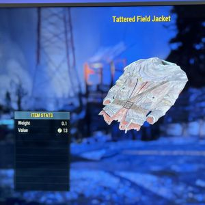 Apparel | tattered field jacket