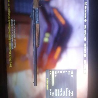 Weapon | TSE Double Barrel