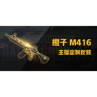 PUBG | ChengZi M416 AUTO