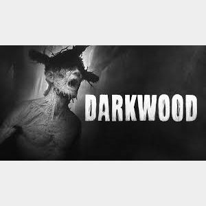 Darkwood | Fast Delivery ⌛| Steam CD Key | Worldwide |