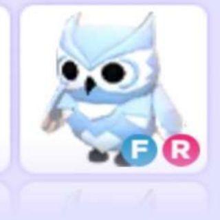 Pet   2x FR Snow Owl