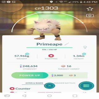 Bundle | Primape Pokemon Go