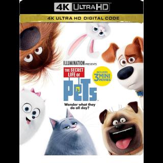 THE SECRET LIFE OF PETS 1 (2016) (4K UHD DIGITAL CODE) ITUNES INSTANT DELIVERY