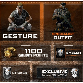 Call of Duty: Black Ops 4 Additional Content (Instant delivery)