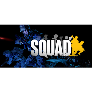 Squad (Steam - Instant delivery)