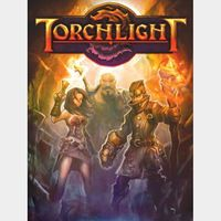 Torchlight (Instant delivery)
