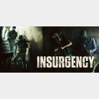 Insurgency (PC Steam - Instant delivery)