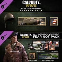 Call of Duty WWII DLC: Endowment Bravery & Fear Not Packs (Instant delivery)