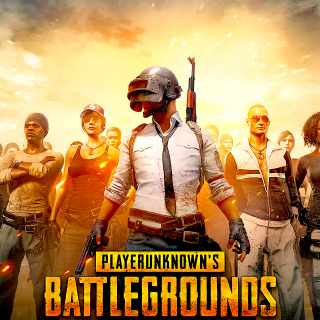 Playerunknown's Battlegrounds PUBG (PC Windows Steam Key Global Digital) Instant Delivery