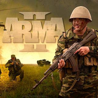 Arma 2 (PC Windows Steam Key Global Digital) Instant Delivery